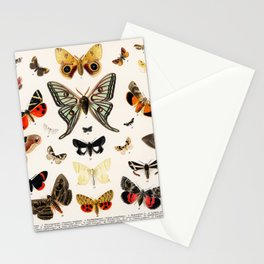 Butterfly Butteflies Mariposa Mariposas Papillon Papillons - Vintage Book Illustration Stationery Cards