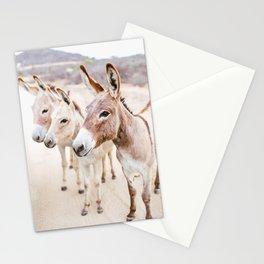 Three Donkeys in Baja, Mexico Stationery Cards