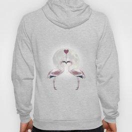 Flamingos Love Night Hoody