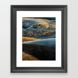 Elephant Seal Texture Framed Art Print