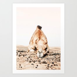 Camille the Camel Art Print