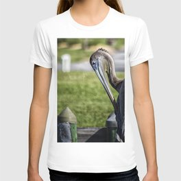 Pelican Itch T-shirt