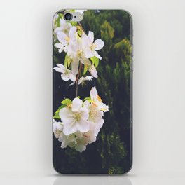 drooping blossom iPhone Skin