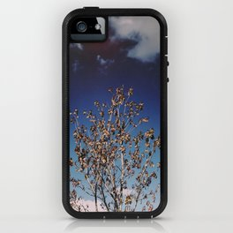 Blue Sky Dry iPhone Case