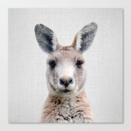 Kangaroo - Colorful Canvas Print