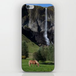 Horse in Iceland iPhone Skin