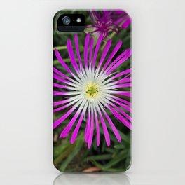 "Delosperma, ""Ice Plant"" iPhone Case"