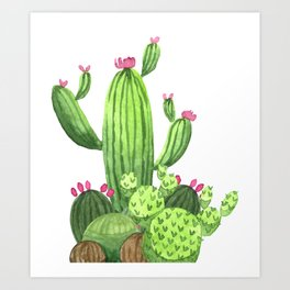 Green Cacti with Pink Flowers Art Print