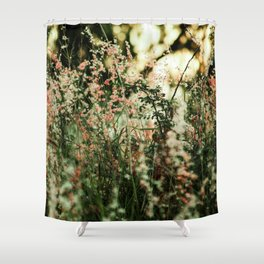 Flowers in the sun Shower Curtain