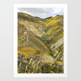 Carrizo Plain Wildflowers Art Print