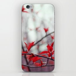 Parallel beauty iPhone Skin