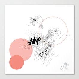 Absorption III Canvas Print