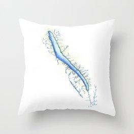 Skaneateles Lake Throw Pillow