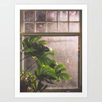 window Art Prints featuring Window by Melanie McKay