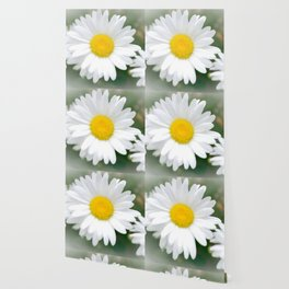 Daisies flowers in painting style 1 Wallpaper
