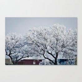 Hoarfrost Canvas Print