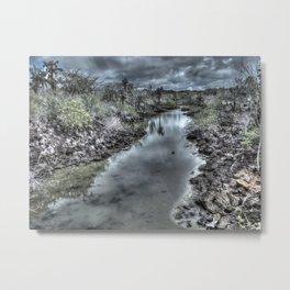 dark river Metal Print
