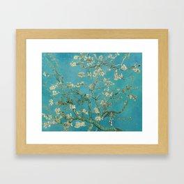 Almond Trees - Vincent Van Gogh Framed Art Print