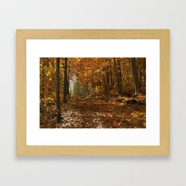 Fall Canada Framed Art Print