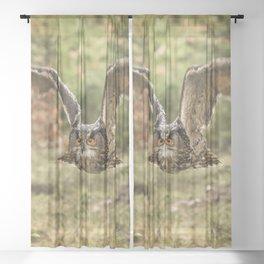 Eagle Owl In Flight Sheer Curtain