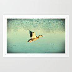 Just Fly Art Print