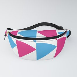 Pink and Blue Fanny Pack
