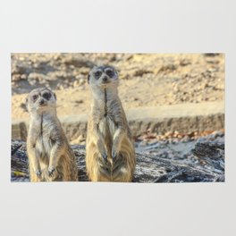 A couple of meerkats Rug