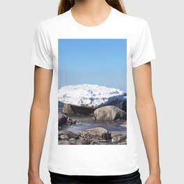 Perched on the Boulders T-shirt