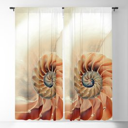 Shell of life Blackout Curtain