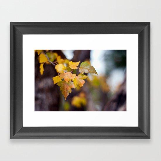 Autumn Yellow Framed Art Print