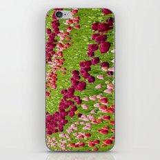 Tulip Field iPhone & iPod Skin