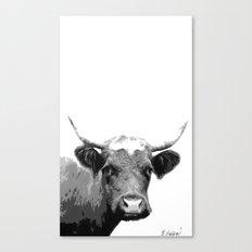 Bessy Canvas Print