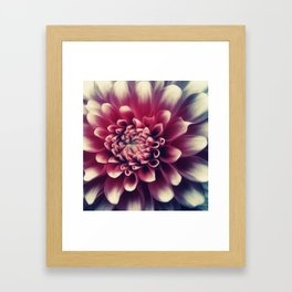 Subtlety Framed Art Print