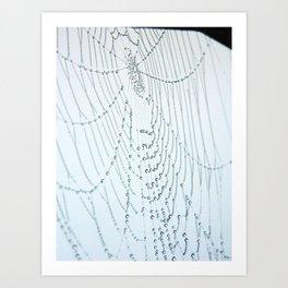 Spider Mandala Art Print