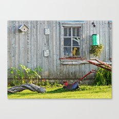 Barn Dog watches over the tomatoes Canvas Print