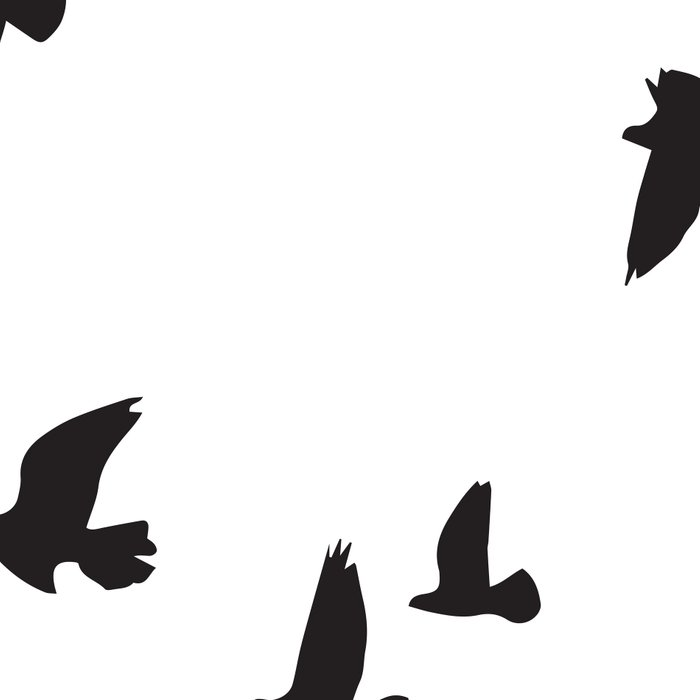 Happy Birds Leggings