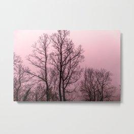 Naked trees silhouette Metal Print