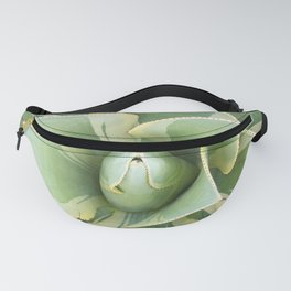 Variegated Agave Fanny Pack