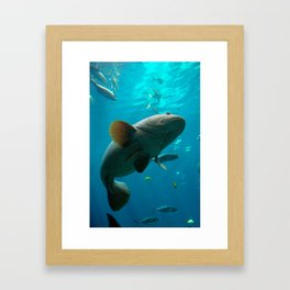 Exposure Framed Art Print