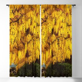 Classical Masterpiece 'Laburnum' by Stanley Spencer Blackout Curtain