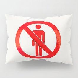 N°681 - 15 01 14 Pillow Sham