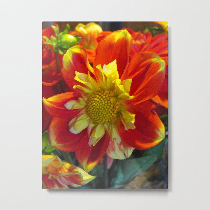 Red Yellow Flower Surprise Metal Print
