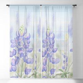 Bluebonnet Sheer Curtain