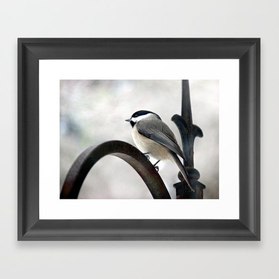 my Little Carolina Chickadee Framed Art Print