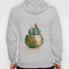 Minimal Cactus in a Golden Pot (Color) Hoody