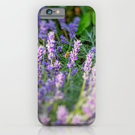 Bumblebee 10 on lavender ahem honey bee actually iPhone Case