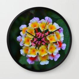 Lantana I Wall Clock
