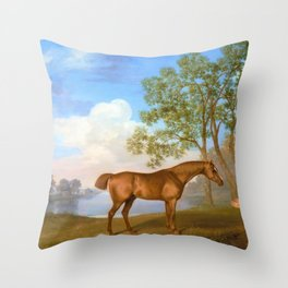 Pumpkin With A Stable-lad - George Stubbs Throw Pillow