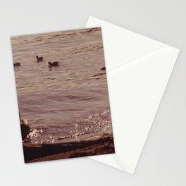 ADULT AND BABY MALLARD DUCKS ON JUANITA BAY, LAKE WASHINGTON AT KIRKLAND NARA 552221 Stationery Cards