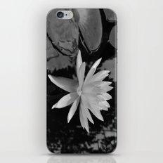 b&w water flower iPhone & iPod Skin